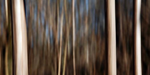 irek kielczyk